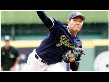 棒球投注松分享:日職東軍全勝